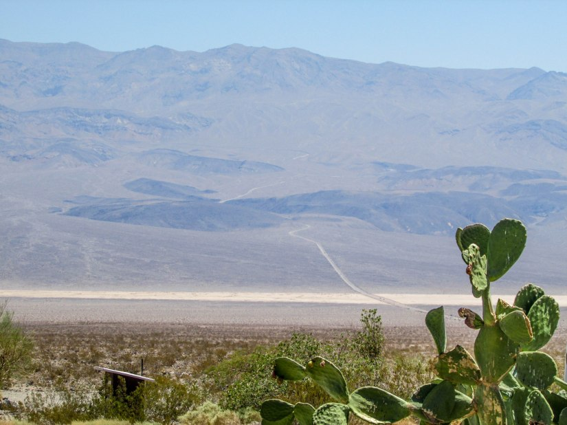 deathvalley-usa-park-californie-road-cactus-desert
