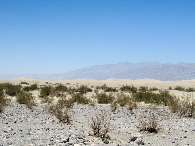 usa-park-dune-sand-californie-deathvalley