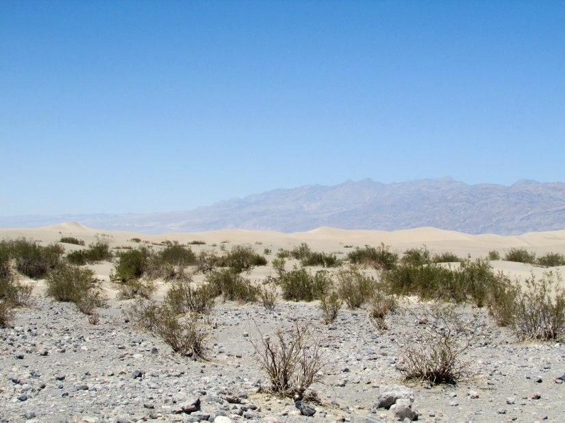 usa-park-dune-sand-californie-deathvalley