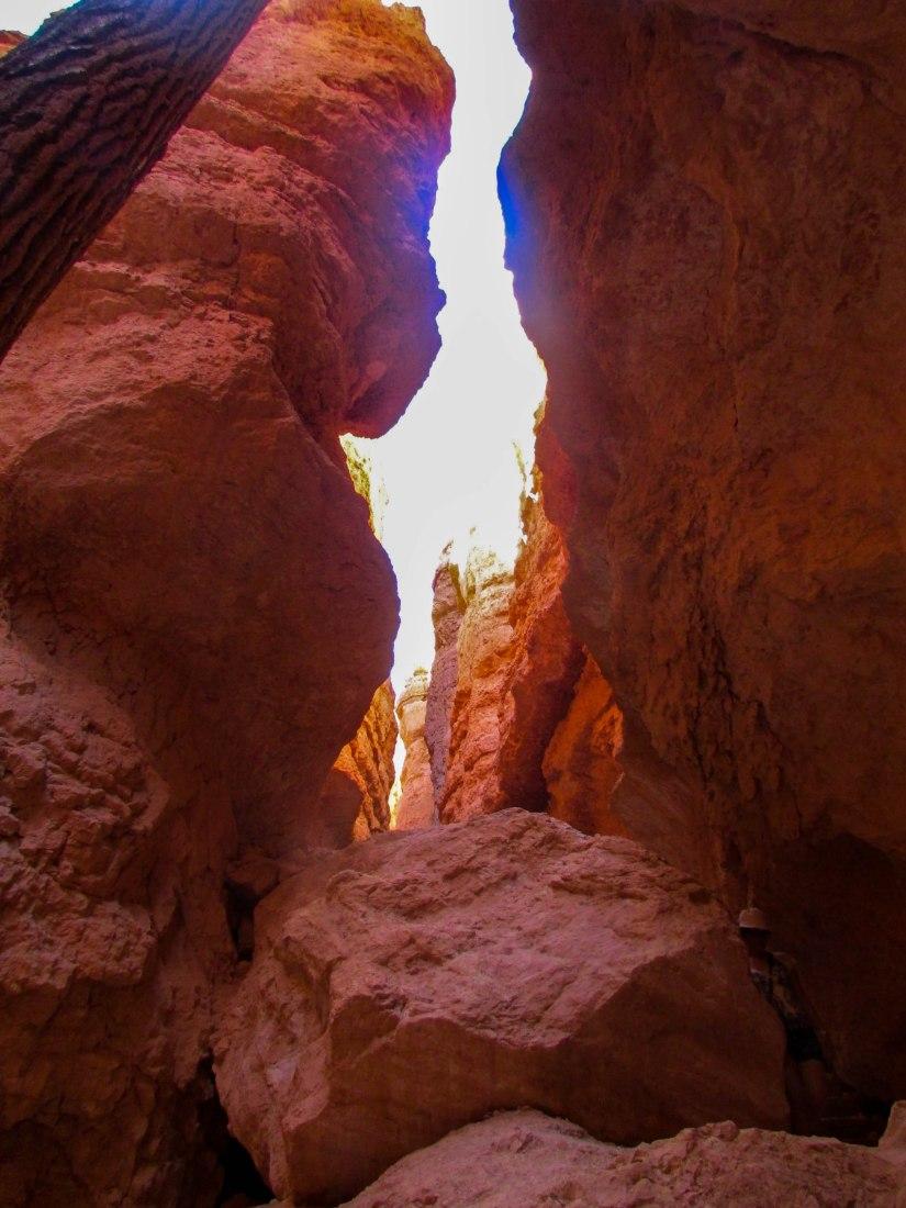 brycecanyon-usa-canyon-roche-westcoast